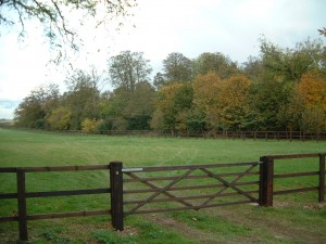 All Types Of Equine Paddock Fencing And Gates Arbantia Fencing